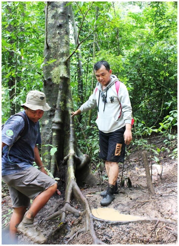 Pulau Sempu (part 4) (4/6)